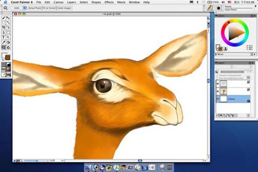 首页 cg绘画 手绘教程 > [ps pt]动物的画法  从现在开始我将图片调如