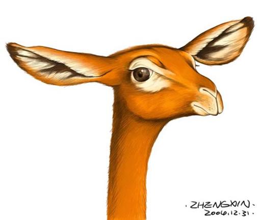 首页 cg绘画 手绘教程 > [ps pt]动物的画法  出处:5d多媒体   责任