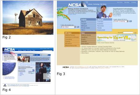 自然选择:自然界的颜色与界面设计 - gowebway - 优品设计