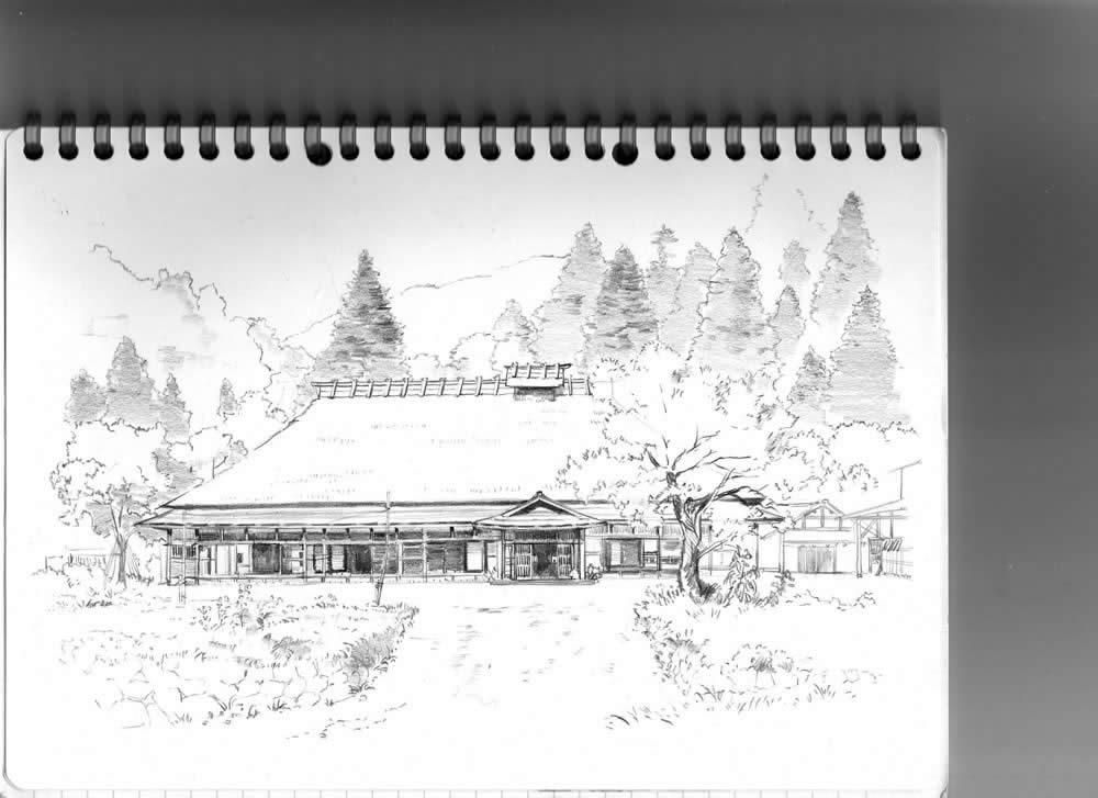美术作品铅笔画 花卉; 素描生日图片大全下载