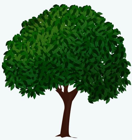 选择钢笔工具(p),并画出叶子的形状.填充形状和路径,并调整到深绿色.