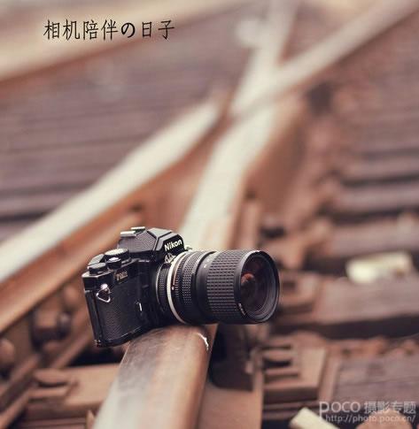 摄影者必知的数码单反和镜头常识 - 奇丽格 - 健康 幸福 快乐
